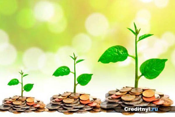 Инвестиционные вклады (депозиты) - что это такое?